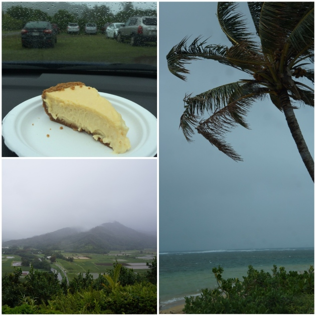 kauaiday8(5)